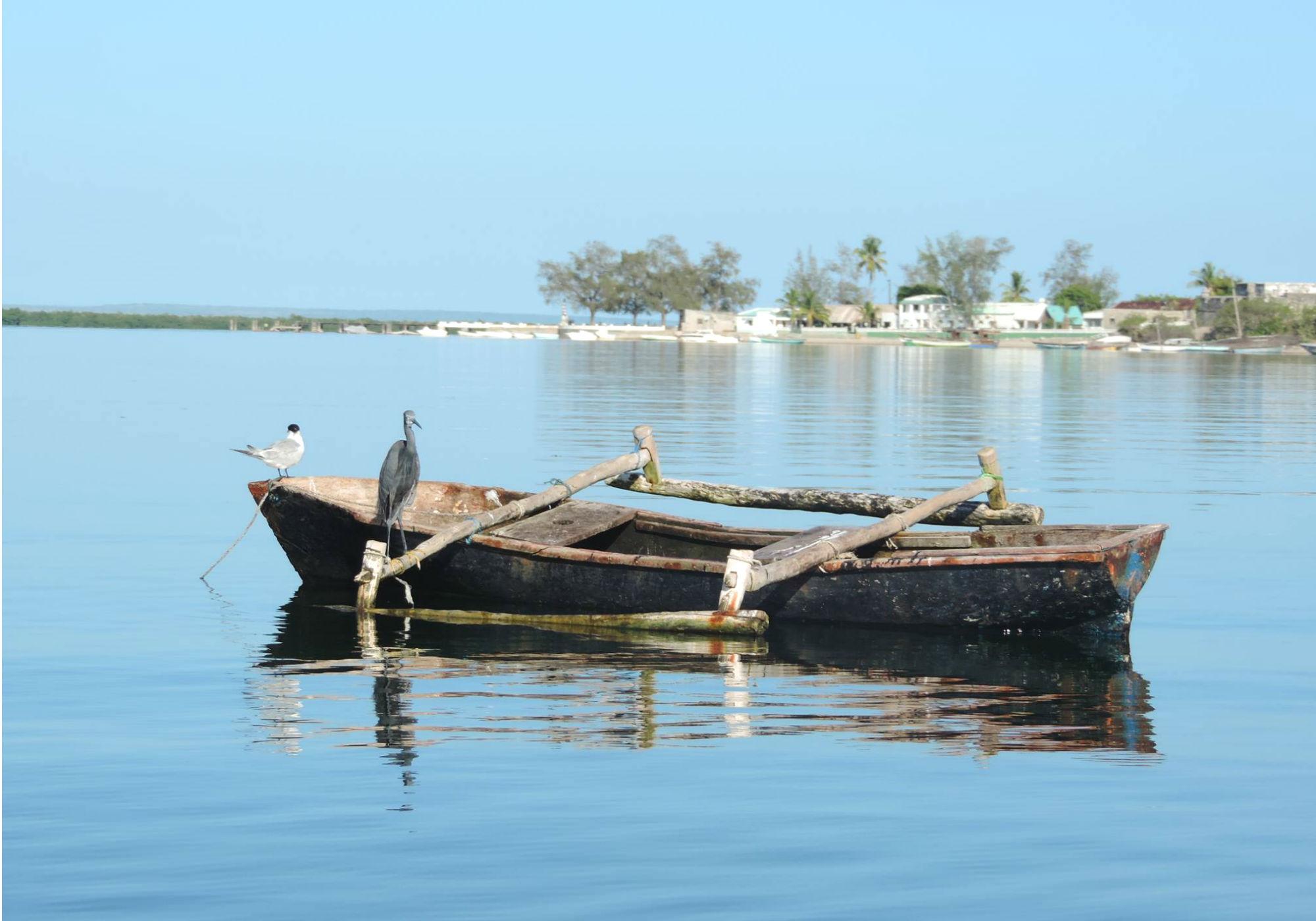 Bild mit Boot
