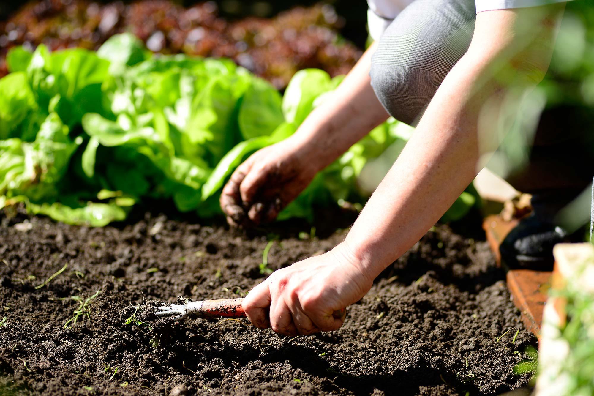 Das Konzept Slow Food wird im Schwarzschmied gelebt