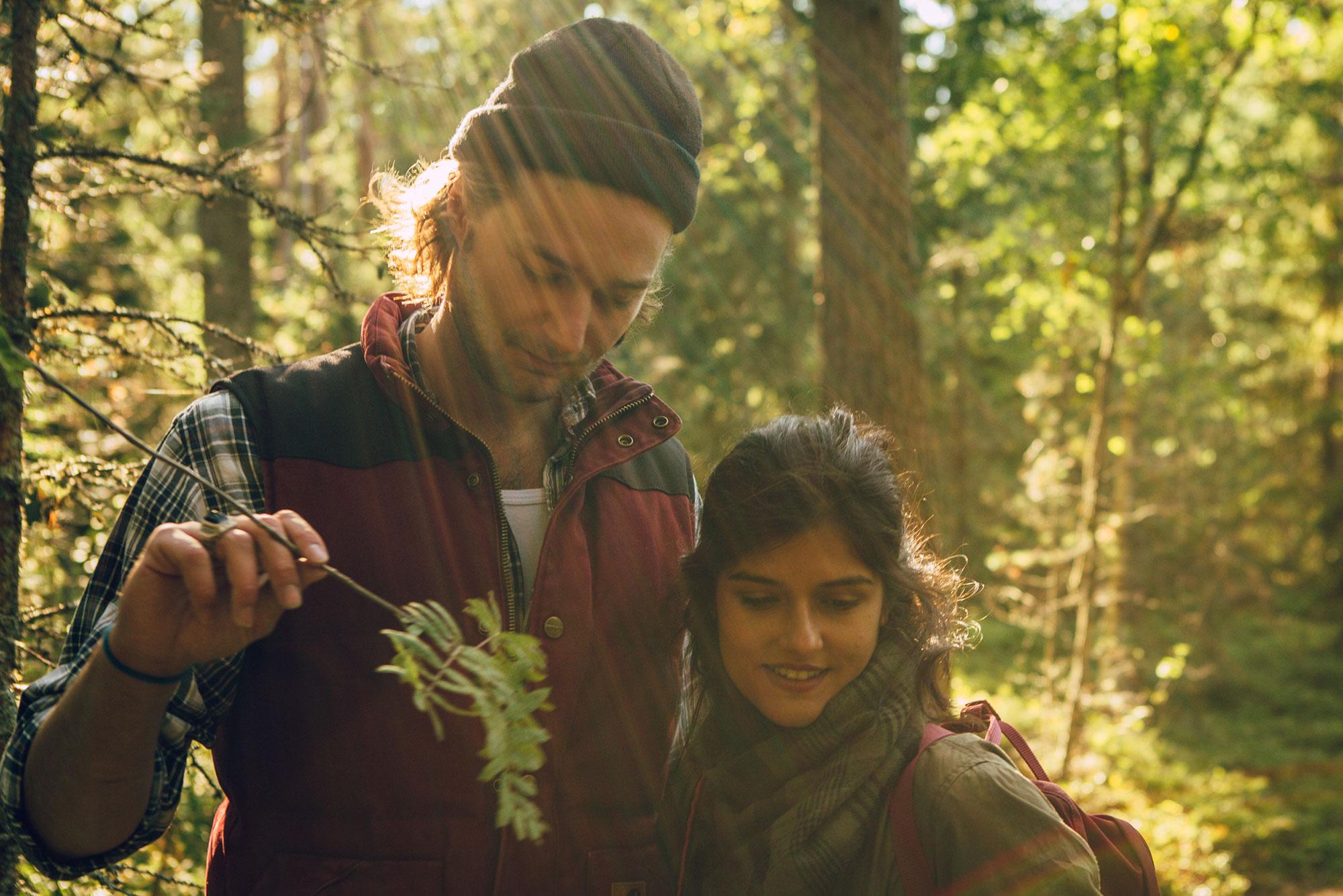 Gemeinsam die Waldlandschaft entdecken