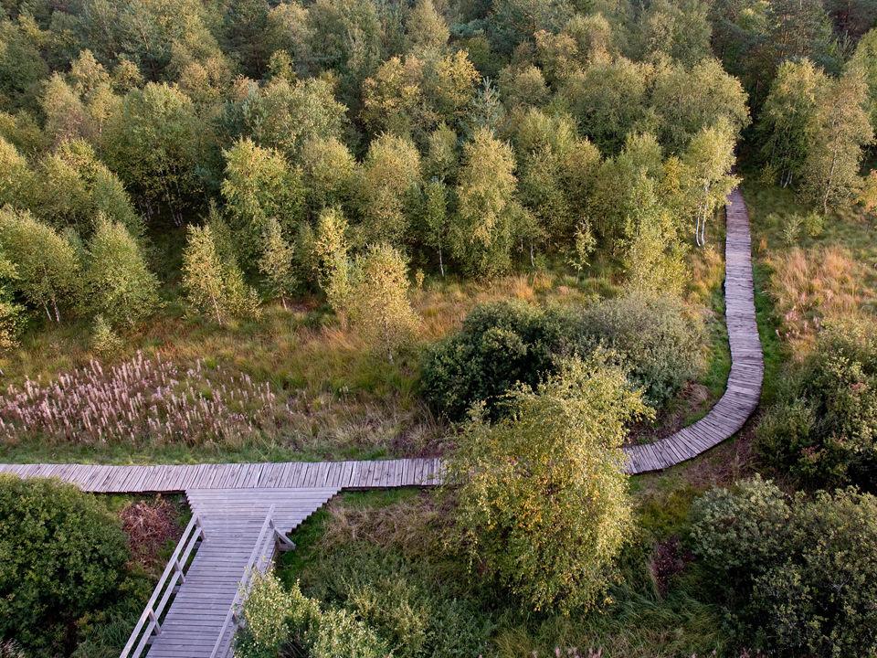 Das Schwarze Moor in Bayern ähnelt einer mystischen Moorlandschaft in Schottland