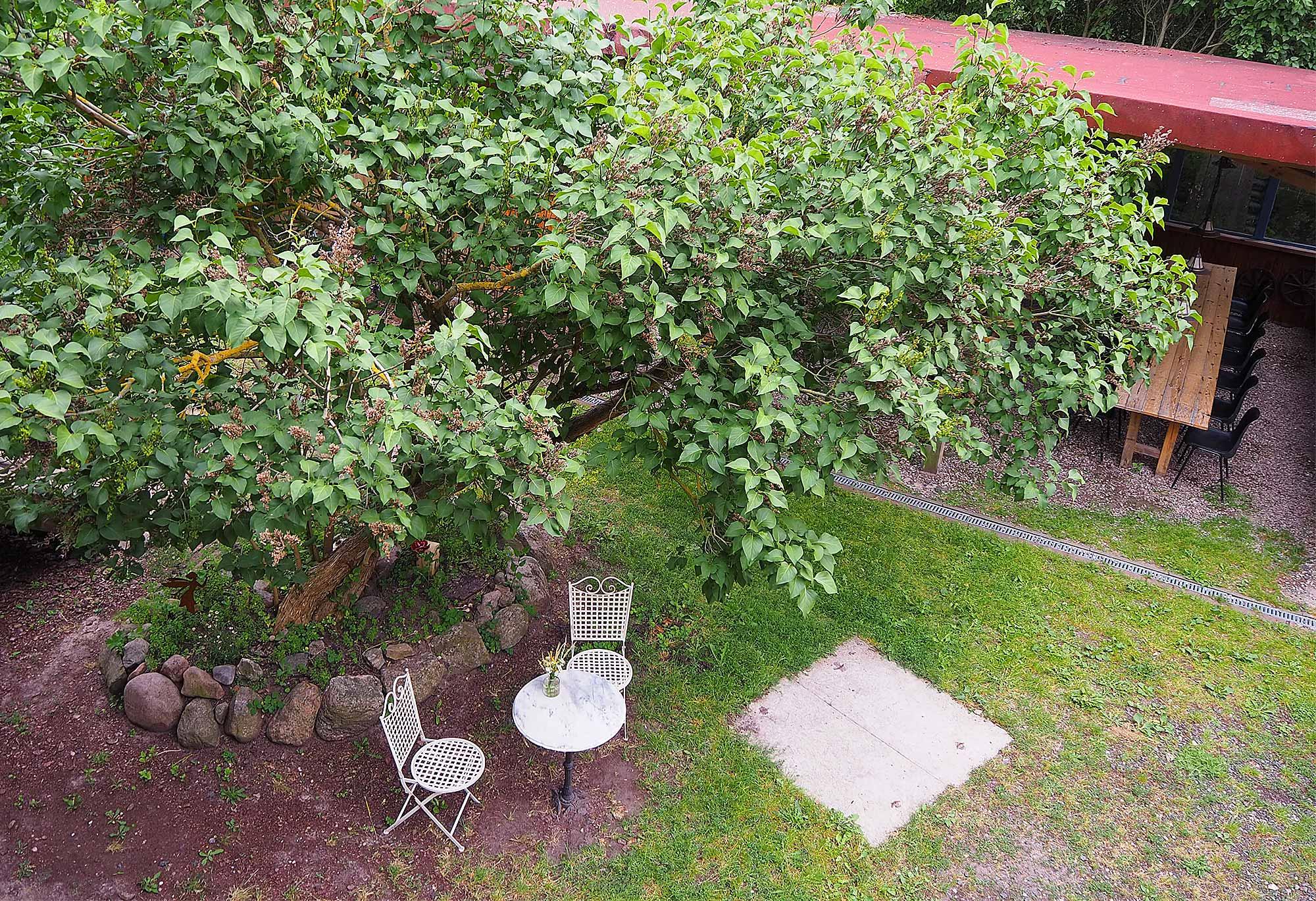 Der Garten der alten Schule
