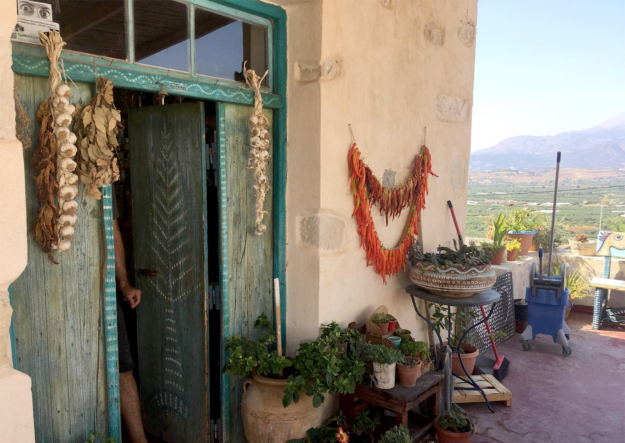 Stöbern im Kräuter- und Teeladen Botano