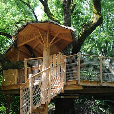 Vom Baumhaus aus kann man den Tieren beim Grasen zusehen