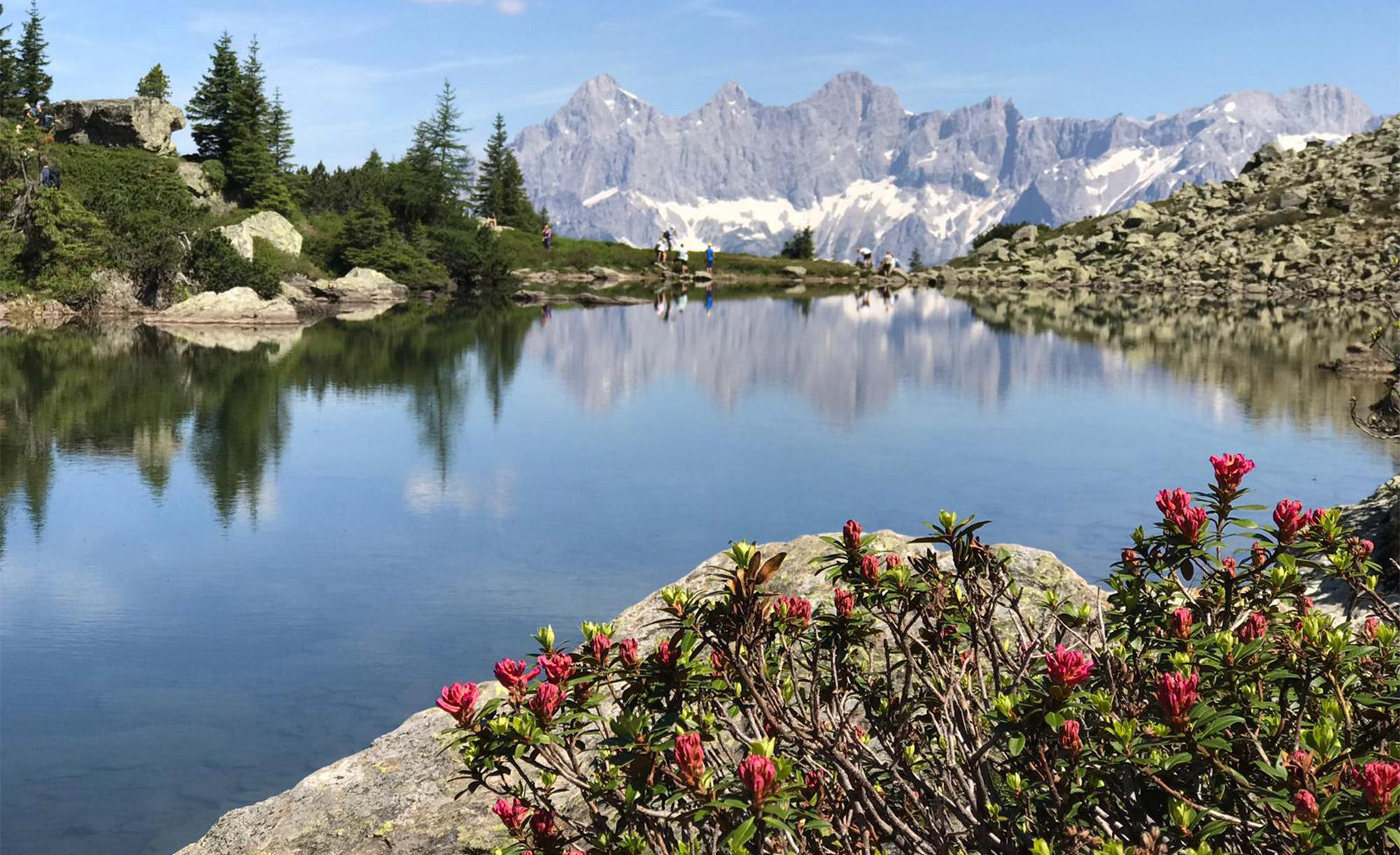 Der Spiegelsee gleicht einem wahrem Naturidyll