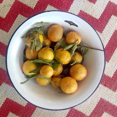 Leckere Früchte bei Mi Cielo genießen