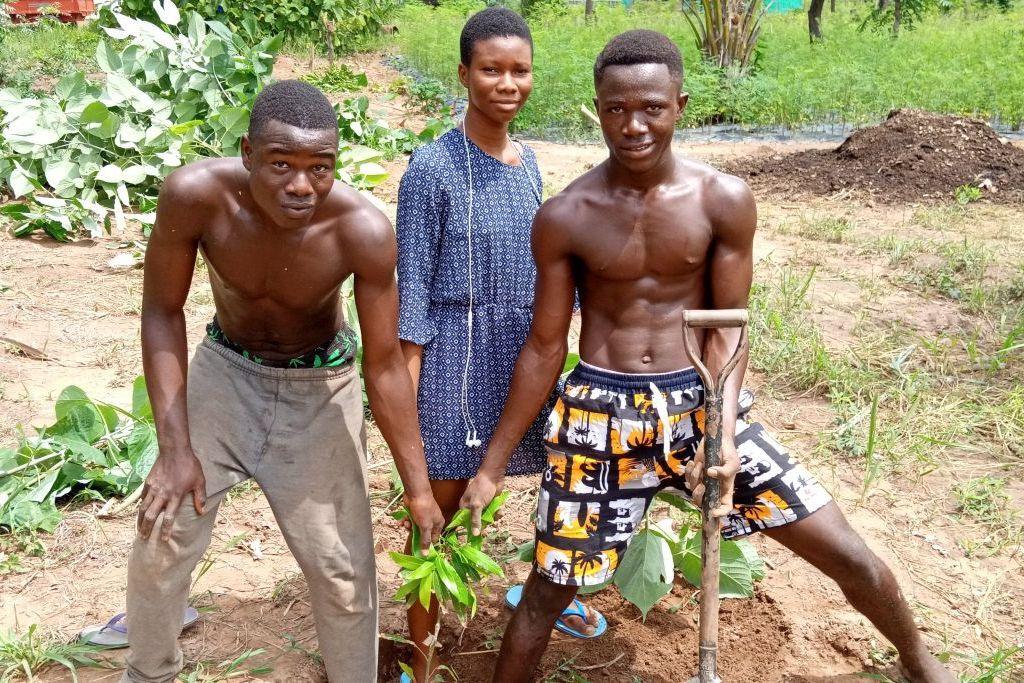 Von einem Aufforstungsprojekt in Ghana