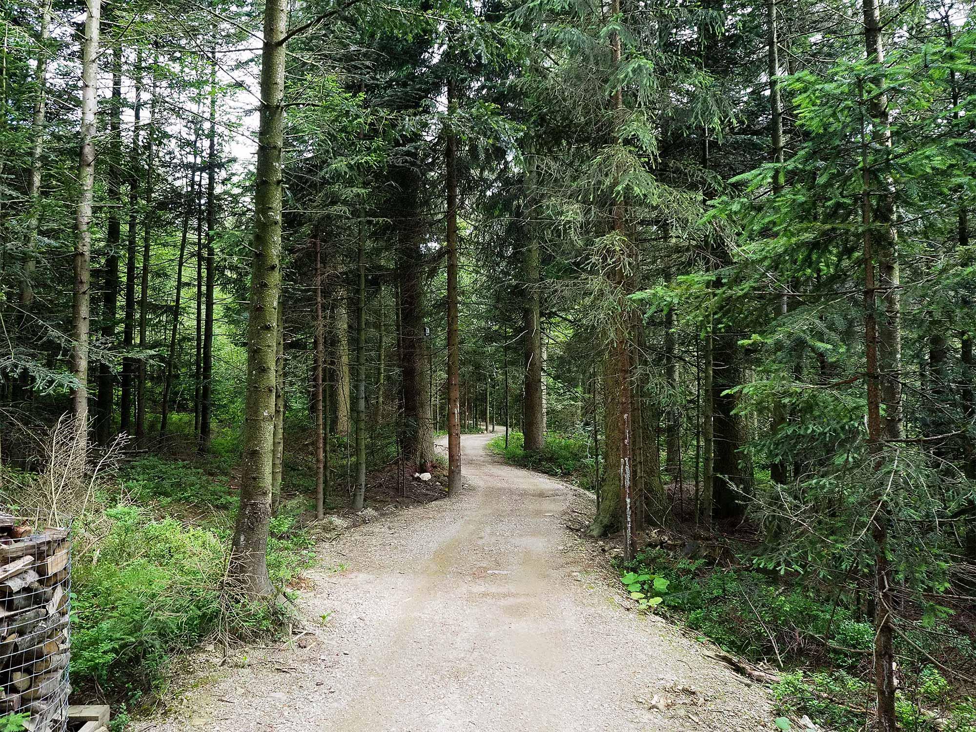 Der Weg zum Hüttendorf Ramenai wirkt entschleunigend auf uns