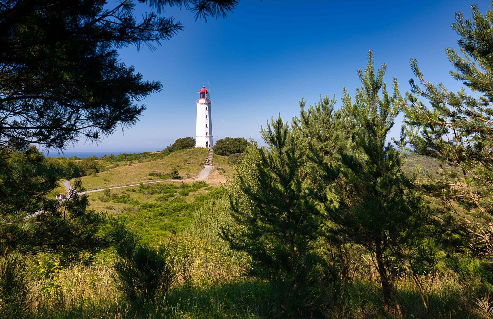 Die bekannte Insel Hiddensee ist seit jeher auch ein Ort für KünstlerInnen