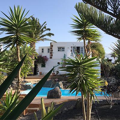 Haushohe Palmen, Kakteen und andere exotische Pflanzen gibt es hier