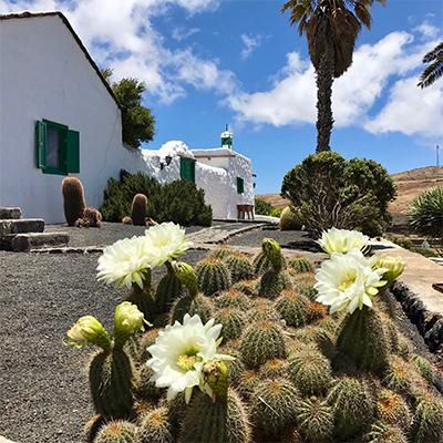 Die Casa Alegría auf Lanzarote