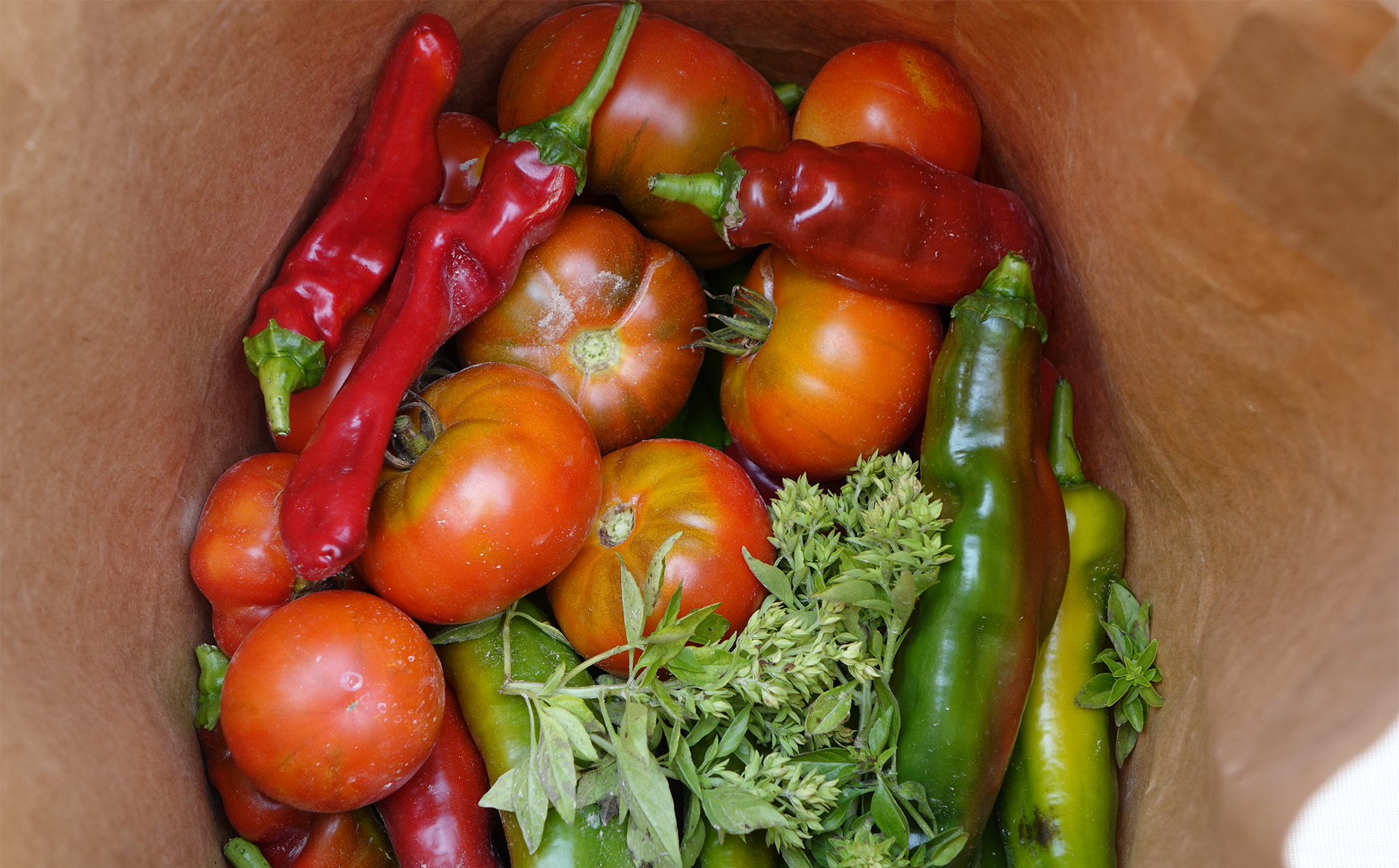 Frisches Gemüse aus dem eigenen Garten schmeckt immer noch am besten