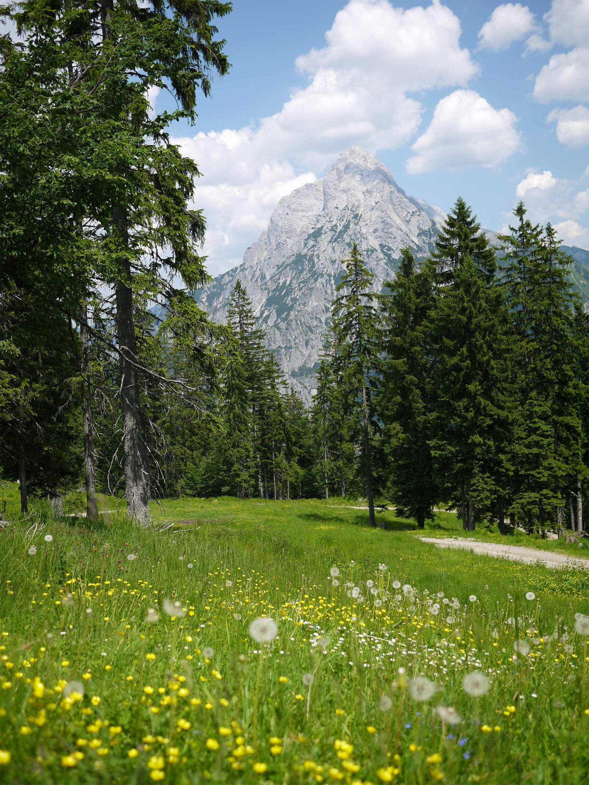 Hike to the Mödlinger Hütte / Photo: Barbara Reitler