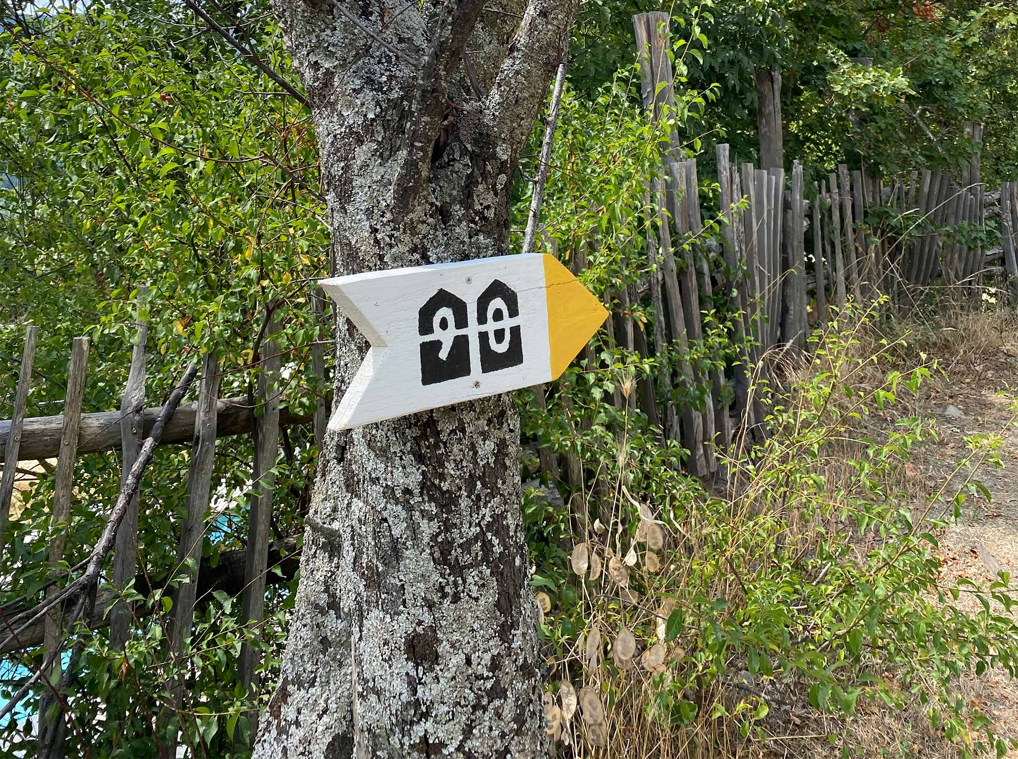 The way to Novanta