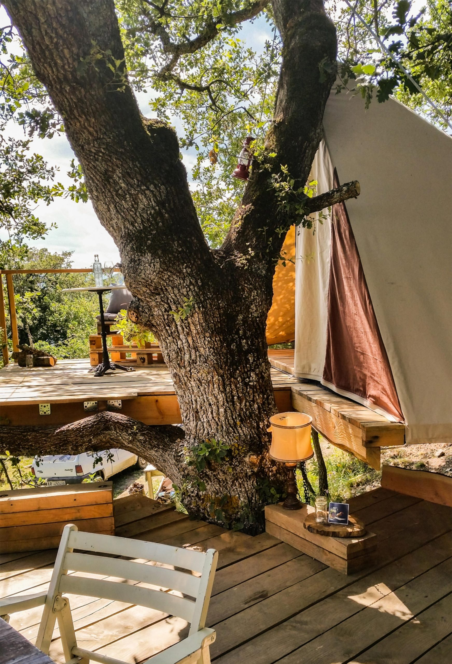 My treehouse tent for the night